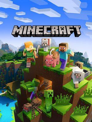Minecraft (Java)
